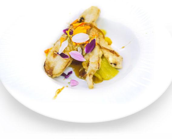 ricetta natura nuova, tempeh fritto, ricetta di marca