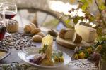 una serie di appuntamenti che la Carnia, montagne incontaminate in Friuli Venezia Giulia, offre ai suoi ospiti per animare l'ultimo scorcio di estate