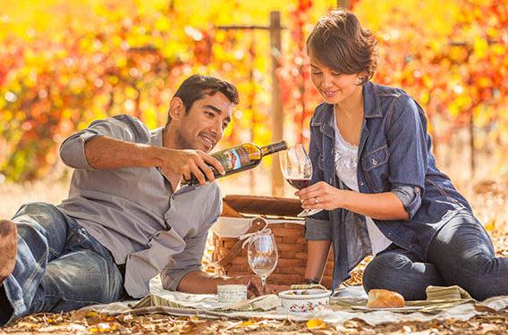 settembre è il mese del California Wine Month