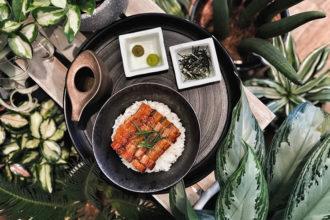 tenoha milano, itinerario di cucina giapponese